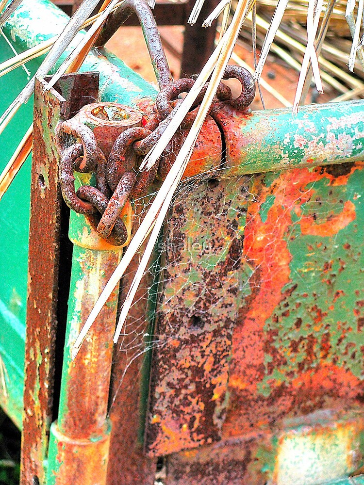 Rust-stick by shaley