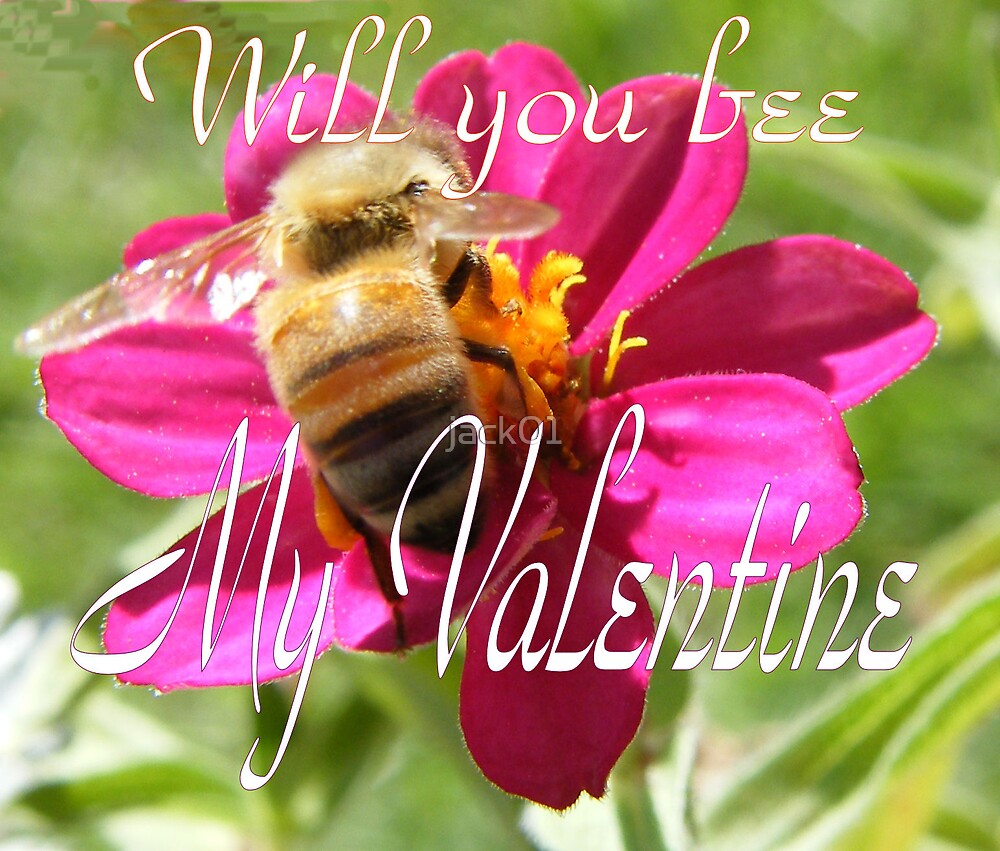 Will you bee My Valentine by jack01
