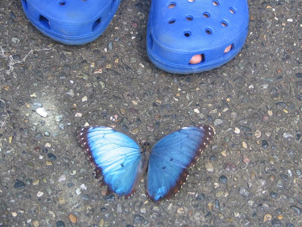 Precious Blues by MelindaUSA79