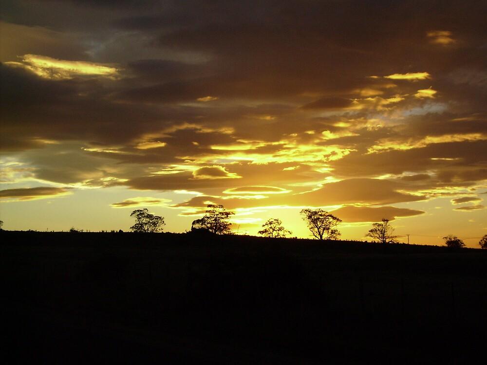 sunset by vanessab