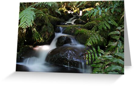 Cement Creek 2 by Michael Rowley
