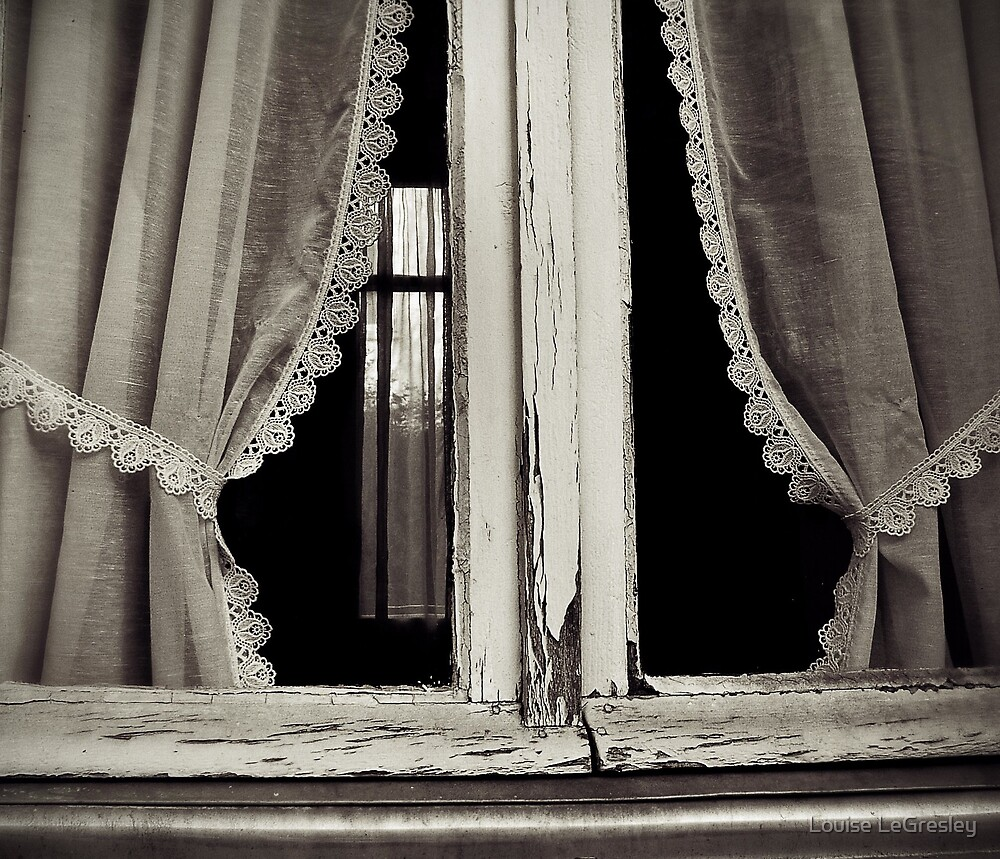 { window with a view } by Louise LeGresley