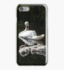 Mummy and cygnets  iPhone Case/Skin