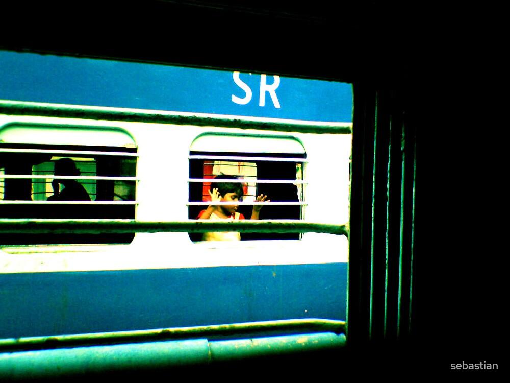 Peeking out the window by sebastian