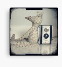 Mouse and camera Canvas Print