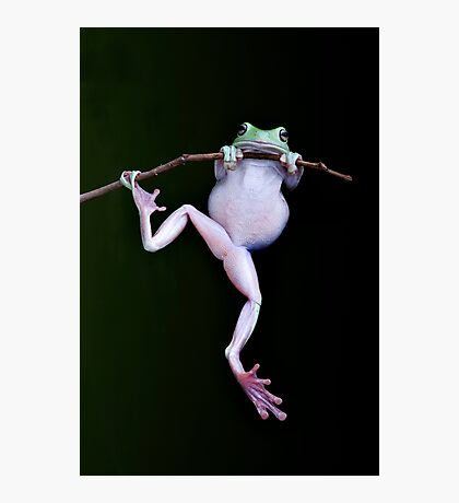 Acrobat Photographic Print