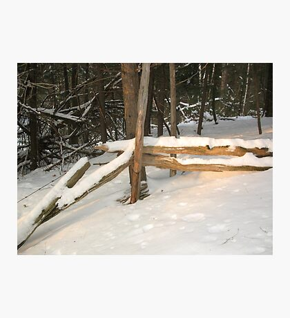 Sunny Winter Day Photographic Print