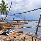 Boatyard at Cajaiba, Bahia, Brazil by Sue Frank