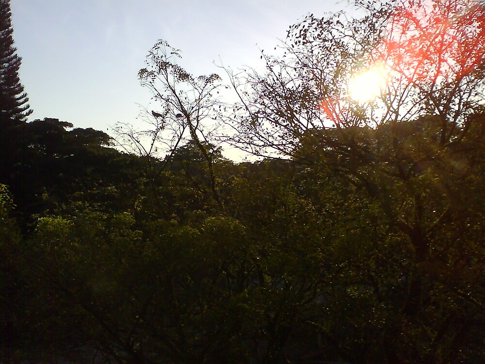 Scenery by Nasirah Banu