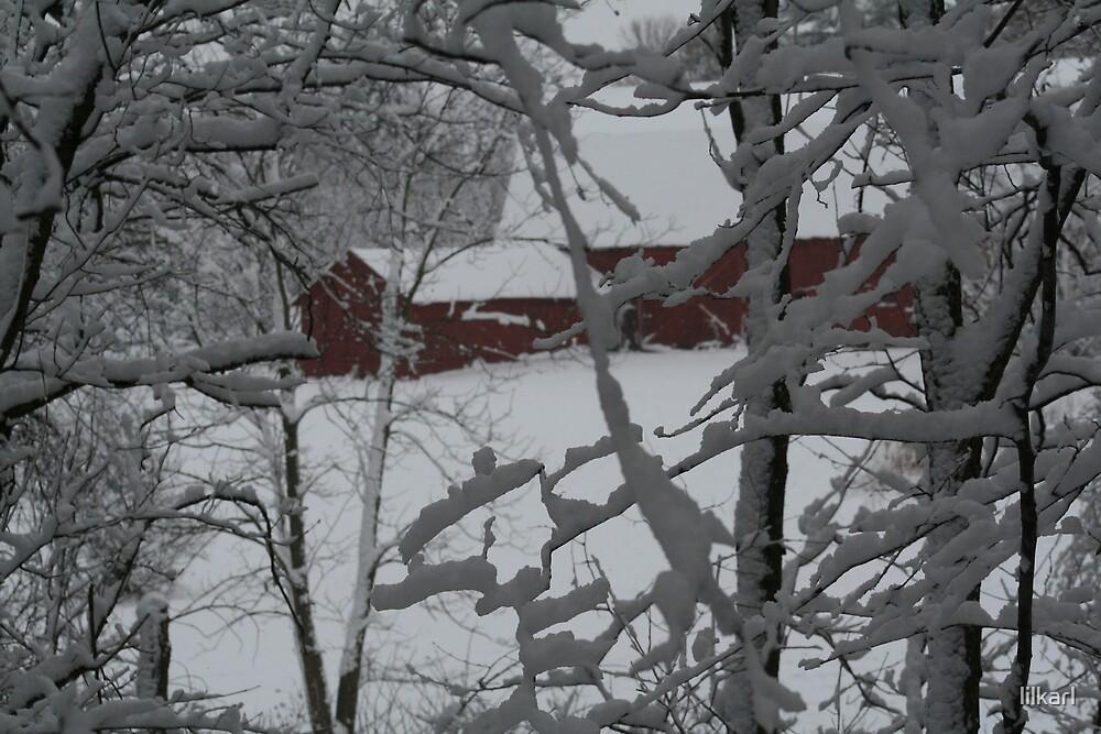 Winter on the Farm by lilkarl