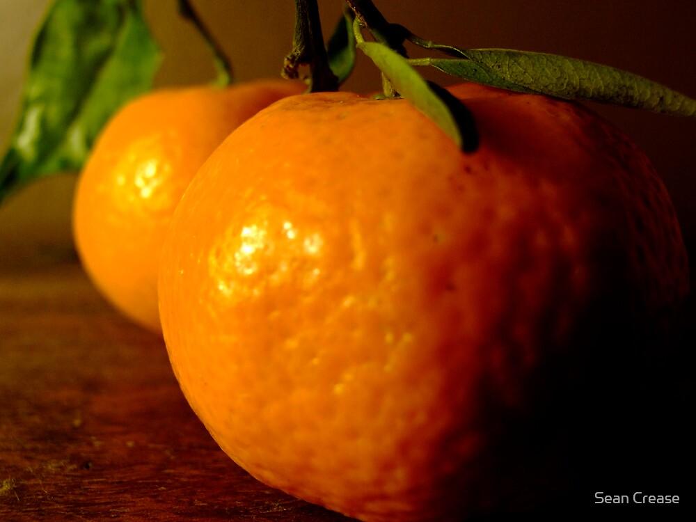Christmas Fruits by Sean Crease