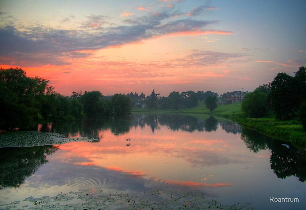 Brocket Sunset by Roantrum