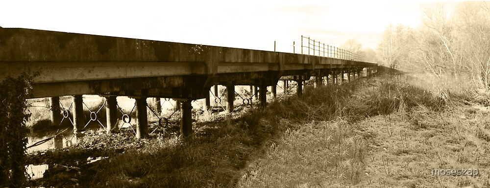 Ramshackle Railway by moseszap