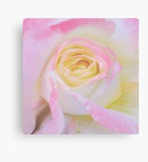 Pink Rose Vector Canvas Print