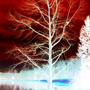 Red & Blue Tree by sarah90