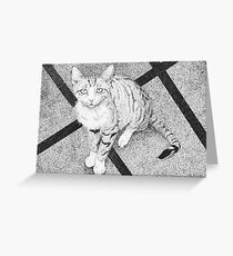 Cat in black and white I  Greeting Card
