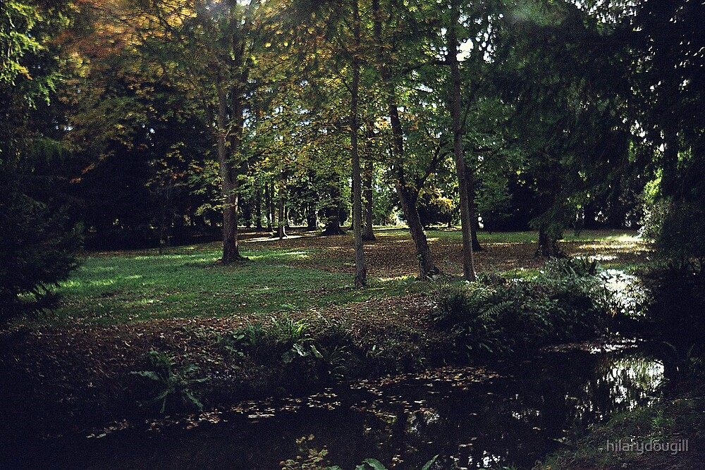 Thorpe Perrow in Autumn by hilarydougill