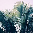 Island Vibe by ALICIABOCK