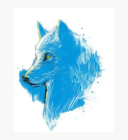 sumi wolf blue Photographic Print