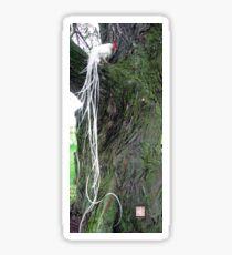 White Onagadori Rooster in Willow Tree Sticker