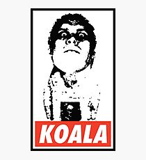 Obey the Giant Koala Photographic Print