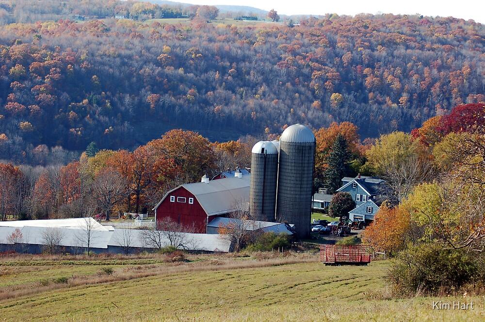 Down on the farm by Kim Hart
