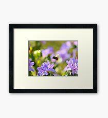 """"""" Azalea Honey """" Framed Print"""