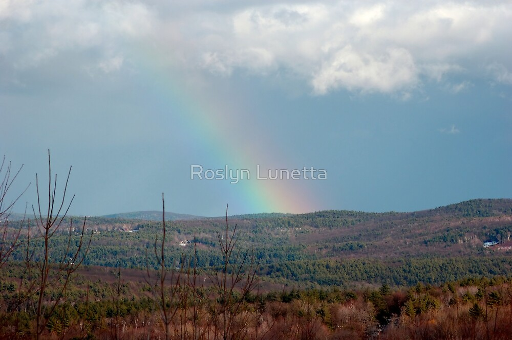 winter rainbow by Roslyn Lunetta