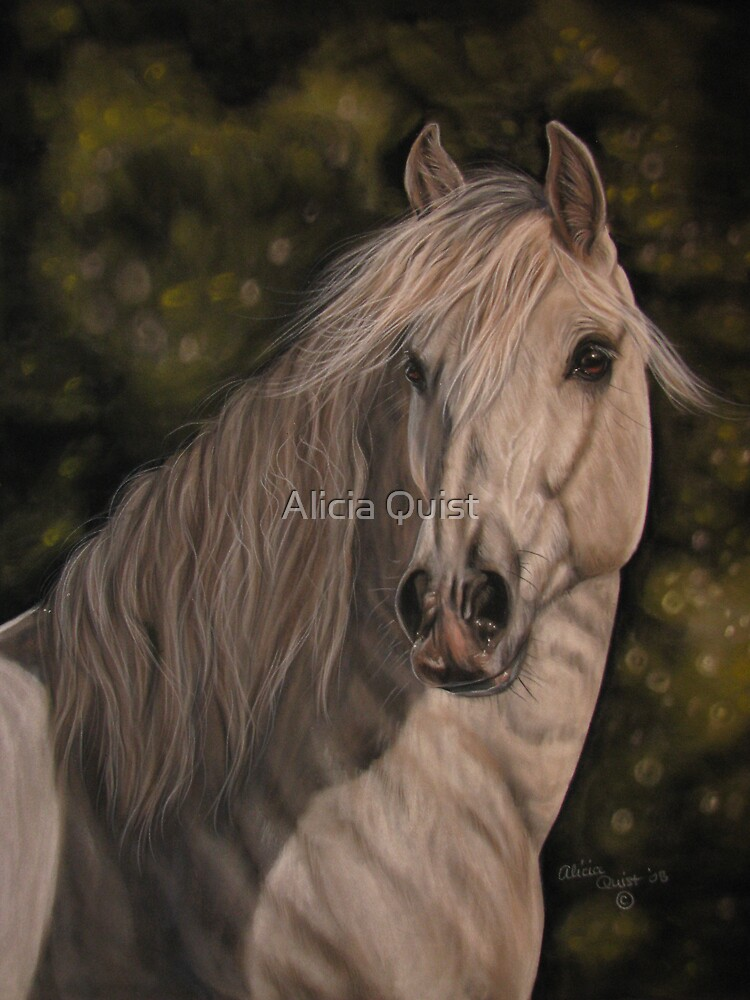"""""""Andalusian"""" by Alicia Quist"""