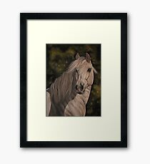 """""""Andalusian"""" Framed Print"""
