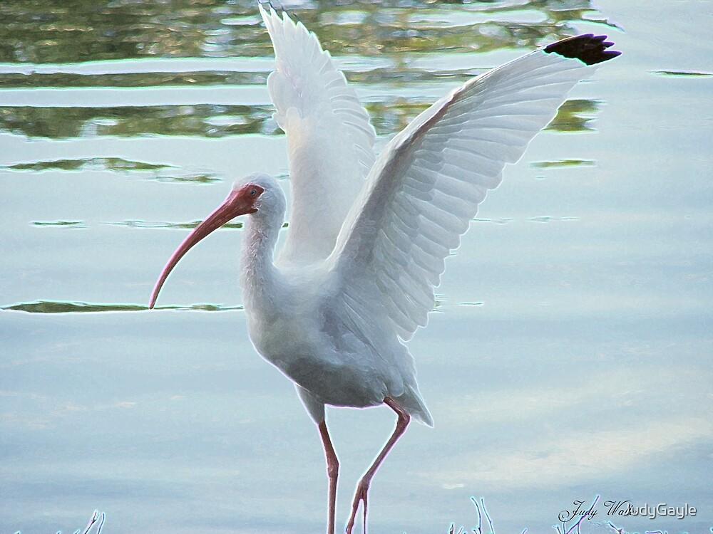 Wings by Judy Gayle Waller