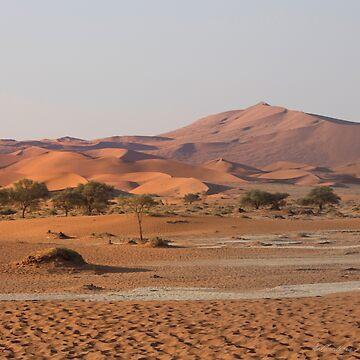 Desert textures - Sossusvlei desert, Namibia by lightwanderer