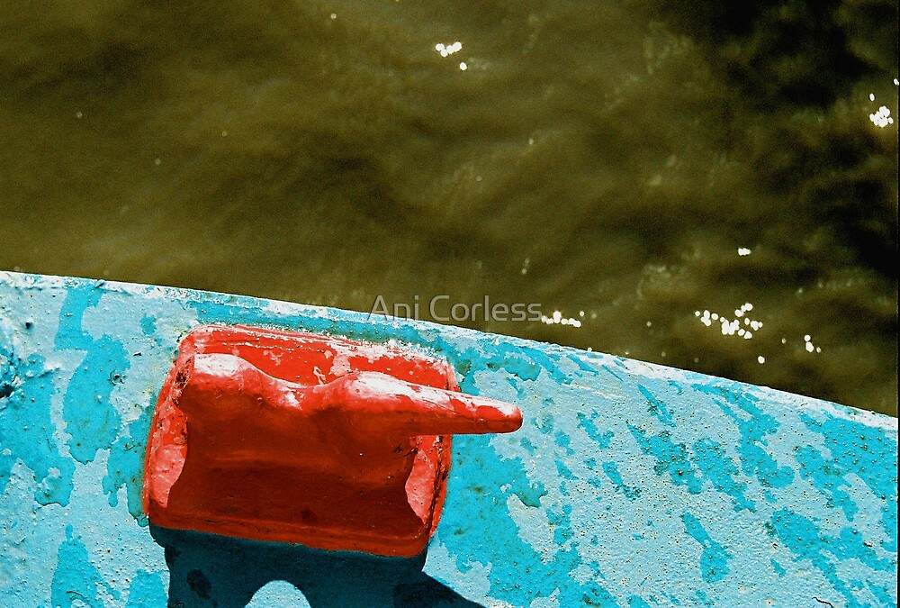 Red Duck by Ani Corless