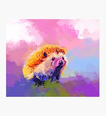 Sweet Hedgehog - cute animal, colorful painting, digital painting Photographic Print