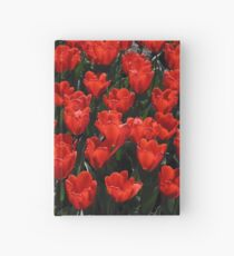 red tulips Hardcover Journal