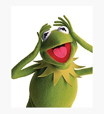 Kermit The Frog (Muppets) Photographic Print