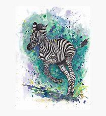 Spunk Punk Zebra Fotodruck