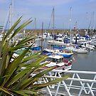 Harbour at Watchet, Somerset by lezvee