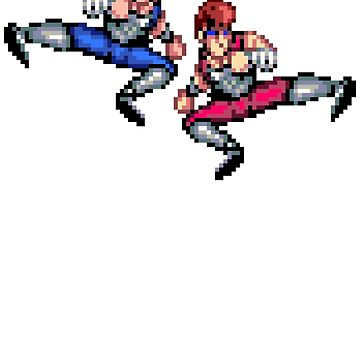 Double Dragon Flying Kicks by ropified