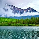Mountains, forest and lake in Jasper National Park by Elena Elisseeva