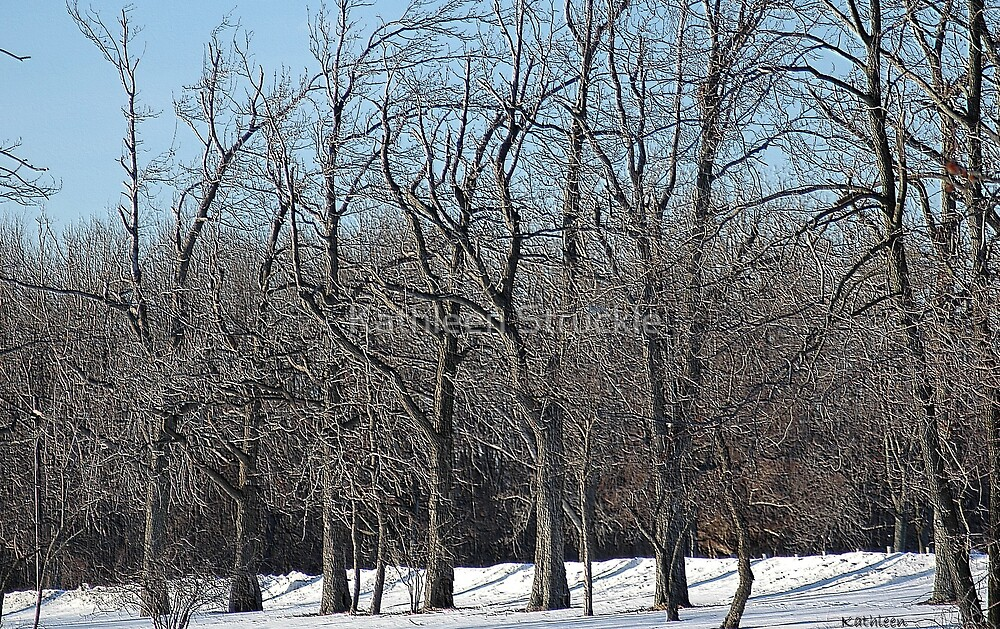 Winter Peace by Kathleen Struckle