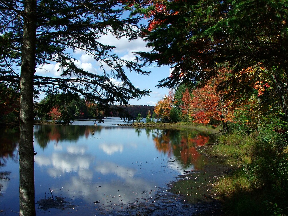 Autumn On The Raquette River by DJ Fortune