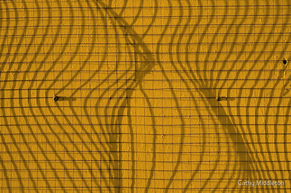 Orange mesh by Cathy Middleton