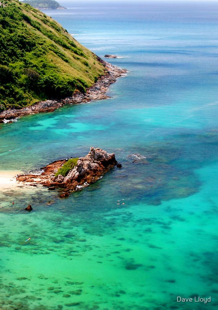 Tropical Coast by Dave Lloyd