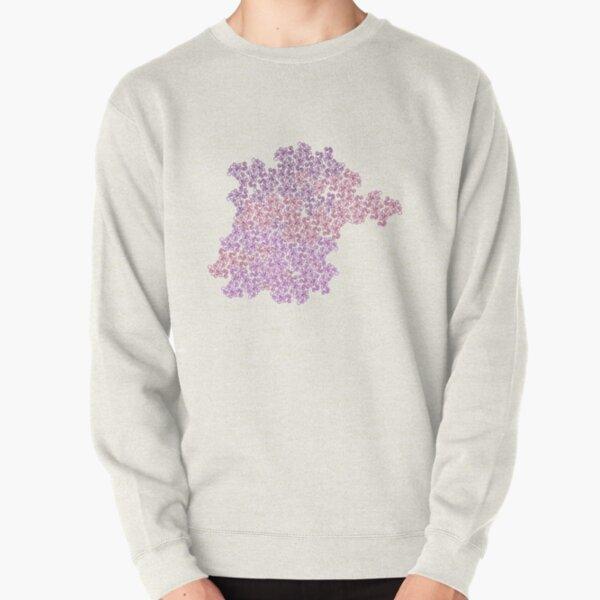 Palimpsest Pullover Sweatshirt