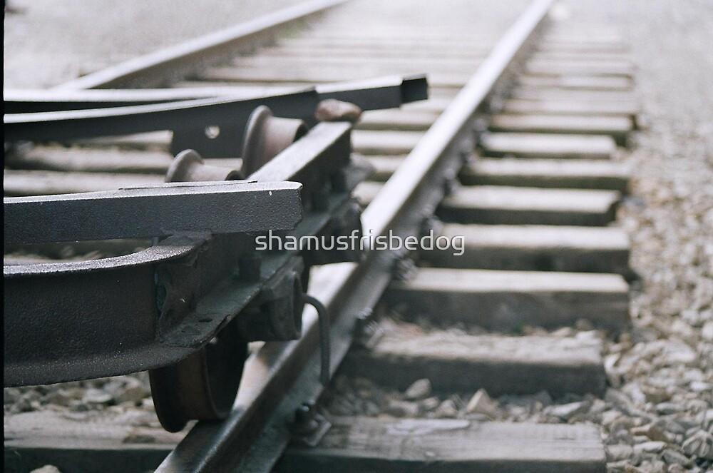 death tracks by shamusfrisbedog