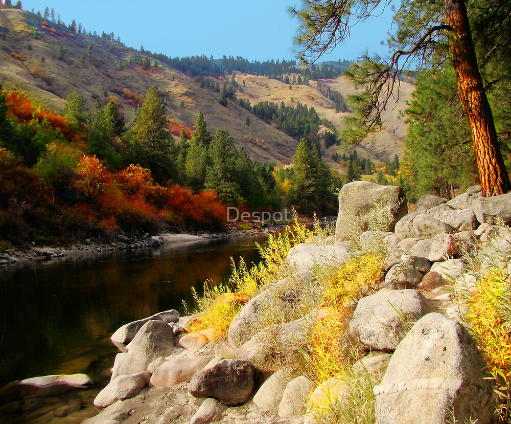 Private Idaho by Despot