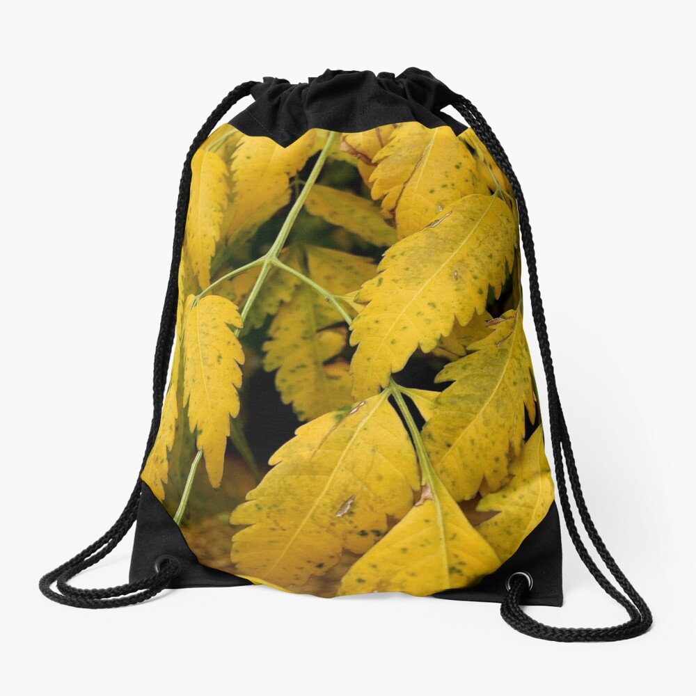 Wisteria Leaves in the Fall Drawstring Bag