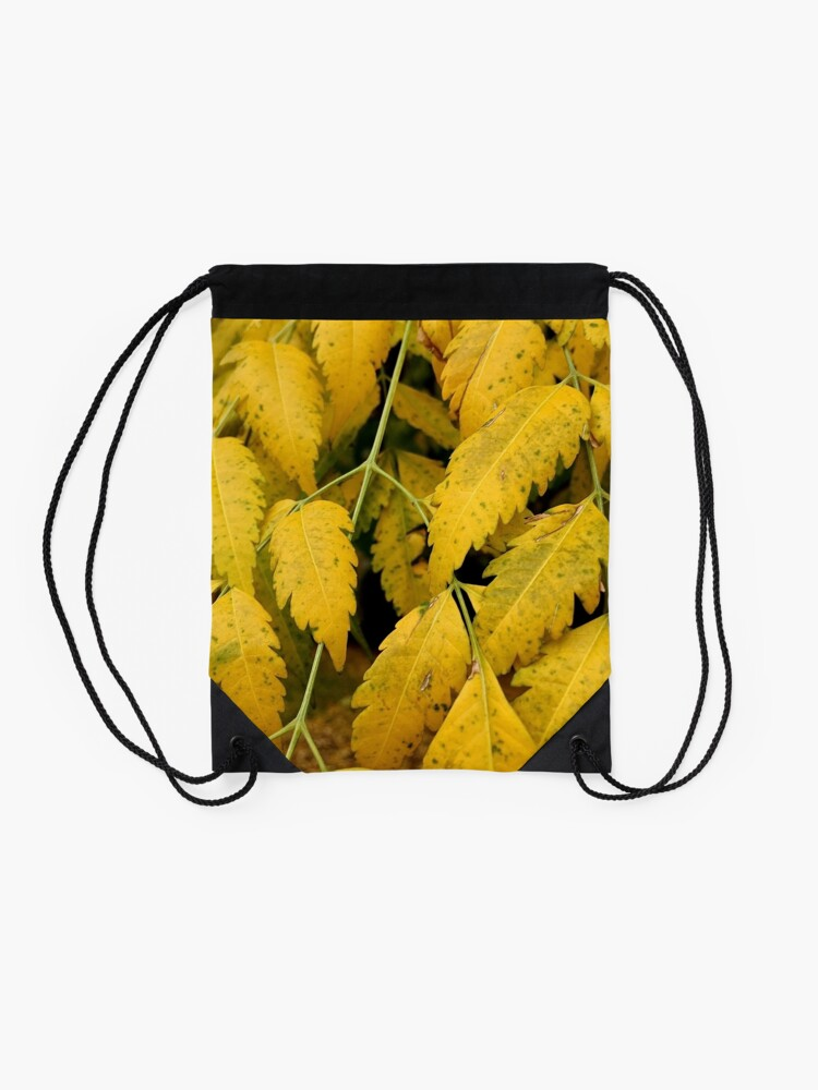 Alternate view of Wisteria Leaves in the Fall Drawstring Bag
