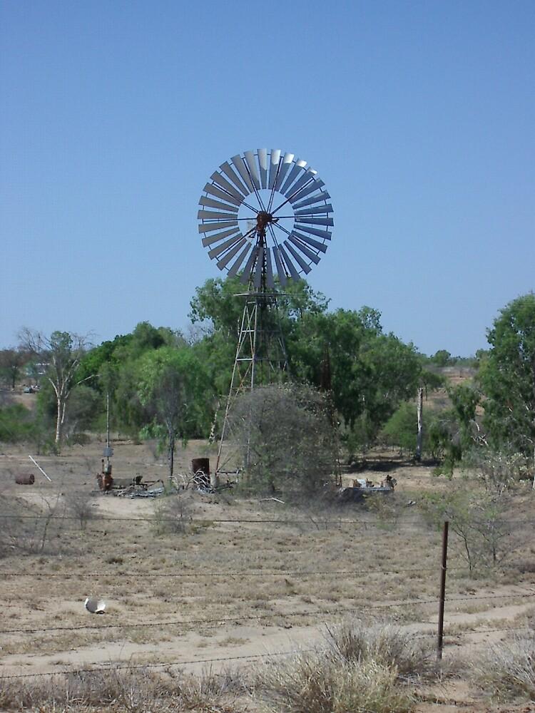 Windmill by Beetlebug
